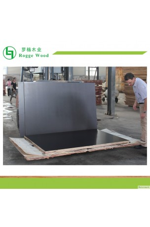 http://www.roggewood.com/69-231-thickbox/formply-12001800mm-for-australia-market.jpg