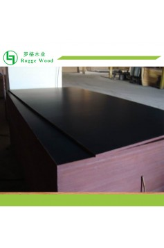 Black Film Coated Plywood for Construction